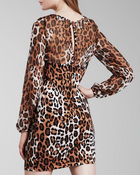 Alagna Leopard-Print Dress