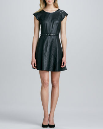 Kristalyn Cap-Sleeve Leather Fit & Flare Dress