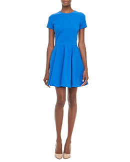 Diane von Furstenberg Ivana Short-Sleeve Full-Skirt Dress