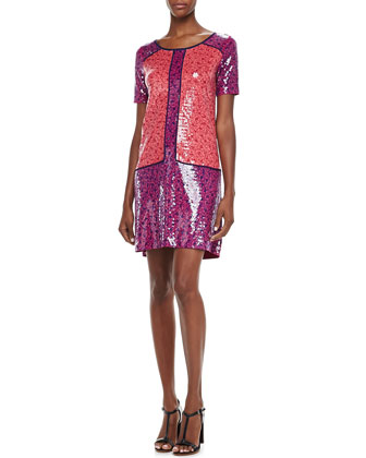 Viola Printed Sequined Dress