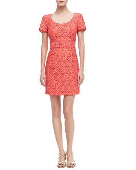 Luna Fitted Lace Dress