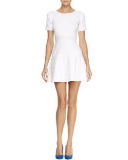Theory Mollia Enchanted Fit-and-Flare Dress