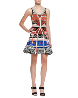 Diane von Furstenberg Ilsa Sleeveless Printed Fit-and-Flare Dress
