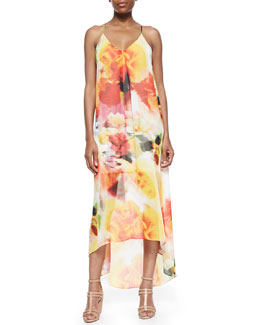 Alice + Olivia Vandy Printed Maxi Dress
