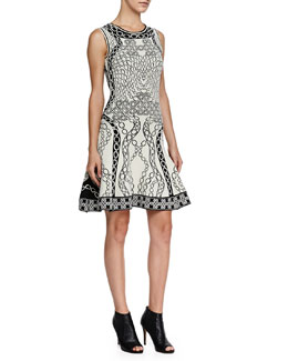 Diane von Furstenberg Sleeveless Printed Fit-and-Flare Dress