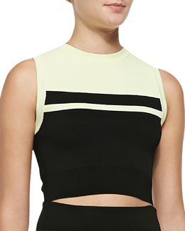 Cory Striped Knit Crop Top