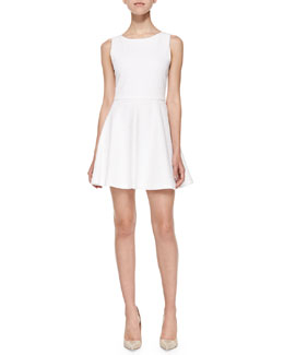 Monah Sleeveless Jacquard A-Line Dress