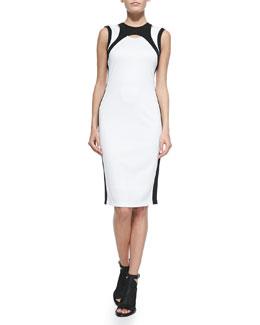 Two-Tone Sleeveless Cutout Dress