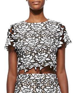Eve Cropped Lace Top