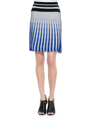 Vertical Striped Knit Skirt