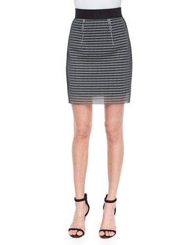 Couture Mesh Miniskirt