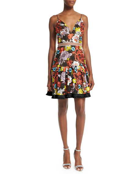 Sleeveless Yiana Floral-Embroidered A-Line Dress, Multicolor