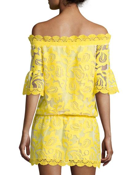 a76bae029fcb Alexis Kit Blouson Off-the-Shoulder Lace Dress