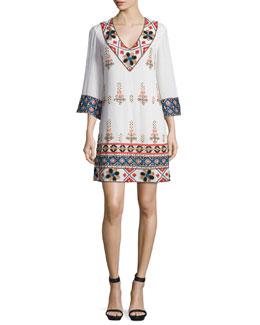 Ray Embroidered Mini Dress, Multicolor