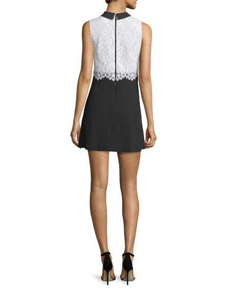 Desra Sleeveless Lace & Crepe Dress, Black/White