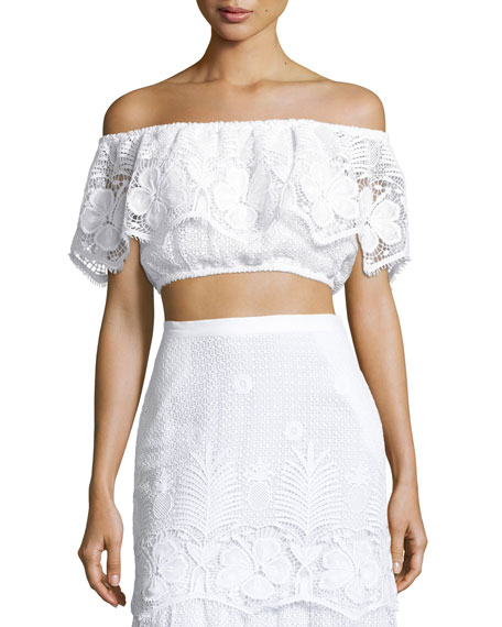 f47bcf81a038c4 Dakota Lace Off-the-Shoulder Crop Top