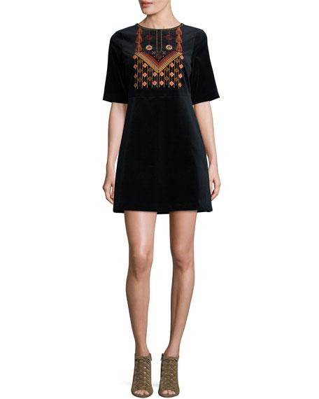 Ezra Embroidered Velvet Dress