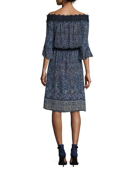 Blaine Off-the-Shoulder Floral Silk-Blend Dress
