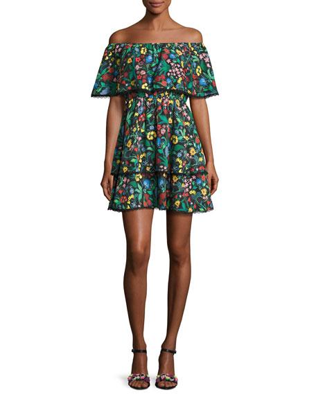 Tylie Floral-Print Off-the-Shoulder Ruffle Mini Dress, Multicolor