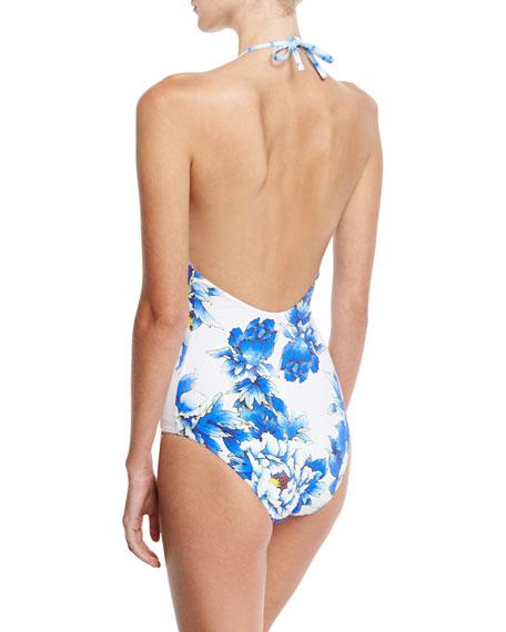 Embellished Plunging V-Neck Halter One-Piece Swimsuit, Ring of Roses