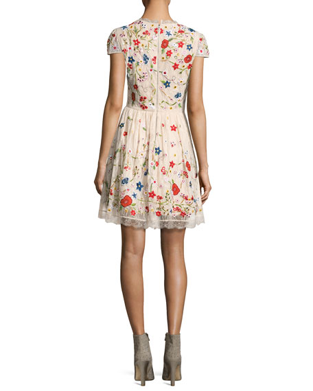 Ariel Cap-Sleeve Embroidered Lace Cocktail Dress, Multicolor