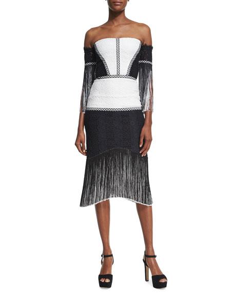 Alexis Antoinette Embroidered Fringed Midi Dress Blackwhite