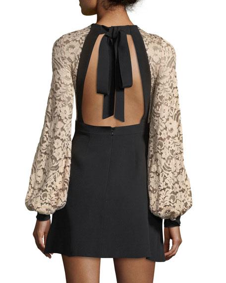 Luziana Lace & Crepe Open Back Cocktail Dress
