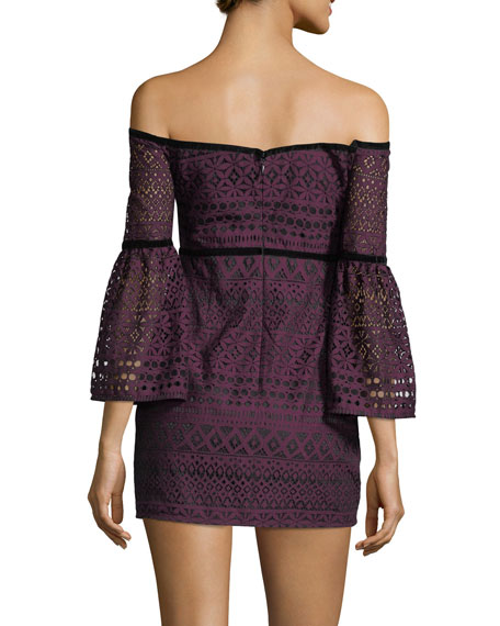 Kakki Off-the-Shoulder Lace Mini Dress