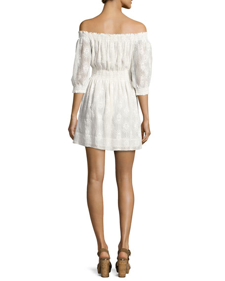 Selina Embroidered Off-the-Shoulder Dress
