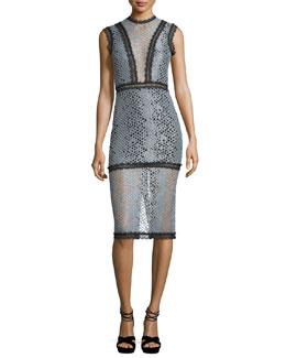 Donatella Sleeveless Fitted Lace Midi Dress