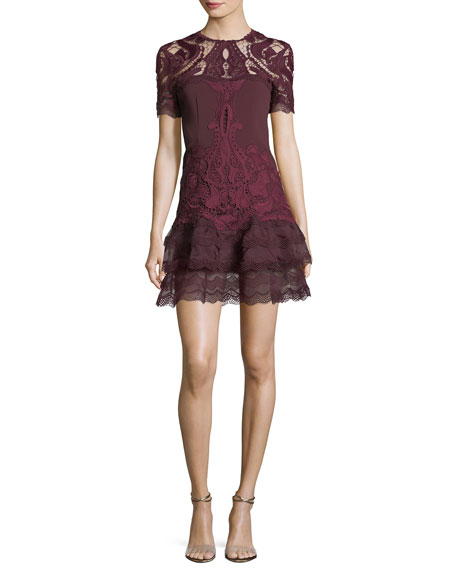 Embroidered Lace Fit-and-Flare Crepe Mini Dress