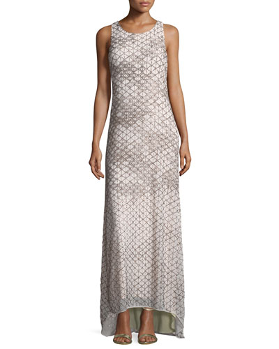 Quest Sleeveless Embellished Gown