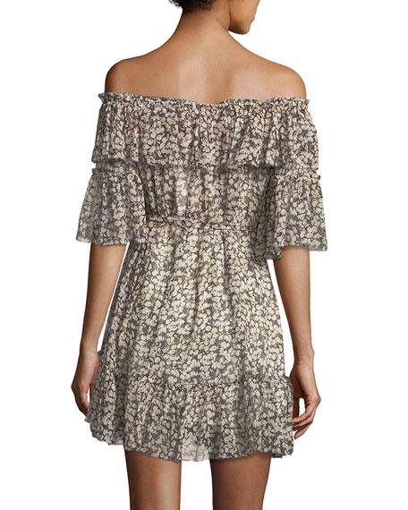 Prima Off-the-Shoulder Cherry-Print Silk Chiffon Dress
