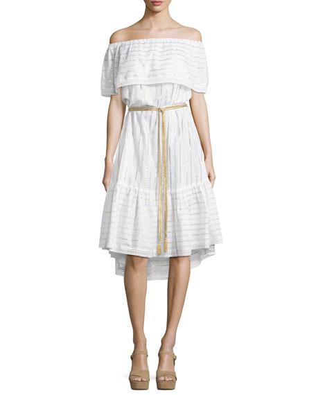 Amaya Off-the-Shoulder Coverup Dress