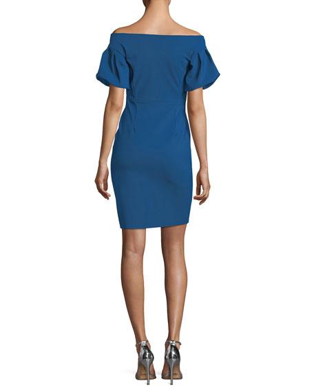 Guendalina Puff-Sleeve Off-the-Shoulder Dress