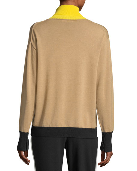 Rhea Turtleneck Colorblocked Wool-Cashmere Sweater