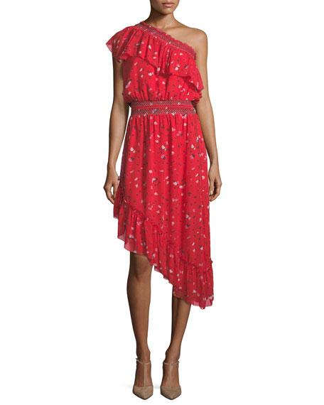 Joie Hafsa One-Shoulder Floral-Print Asymmetric Silk Dress