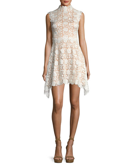 Izzy Sleeveless Floral Lace Fit And Flare Dress by Catherine Deane