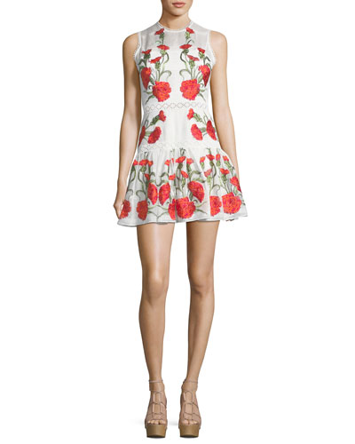 Sabella Sleeveless Floral-Embroidered Fit-and-Flare Linen Dress