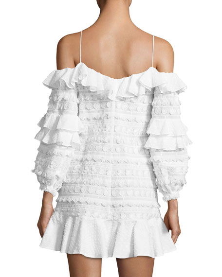 Calypso Cold-Shoulder Embroidered Dress