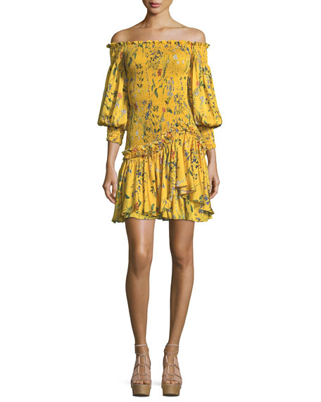 Gemina Off-the-Shoulder Floral-Print Dress