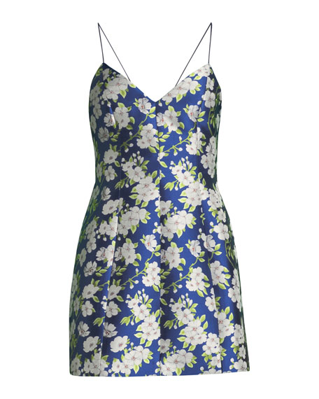 Tayla Floral-Print Lantern Mini Dress