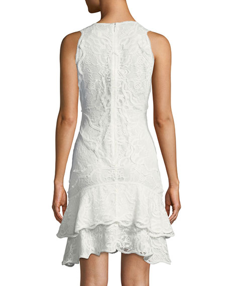 Delicate Lace Embroidered Cocktail Dress