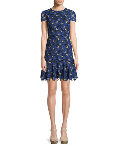 Imani Cap-Sleeve Lace Fit-and-Flare Dress