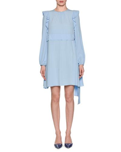Long-Sleeve Ruffle Mini Dress