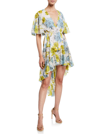 Alexis Idella Floral-Print V-Neck Short-Sleeve High-Low Dress