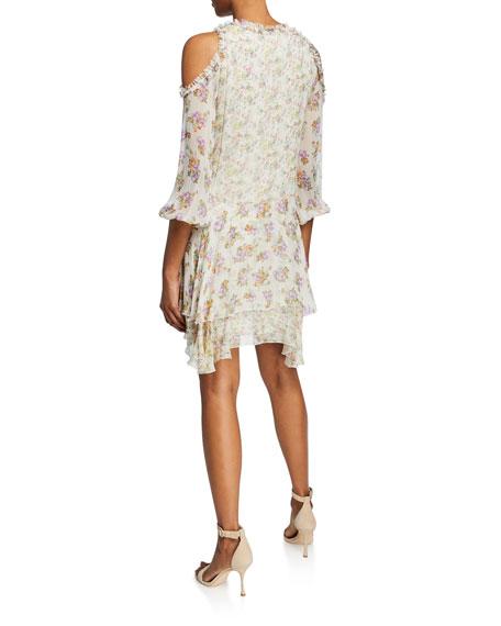Glynda Cold-Shoulder Ruffle Dress