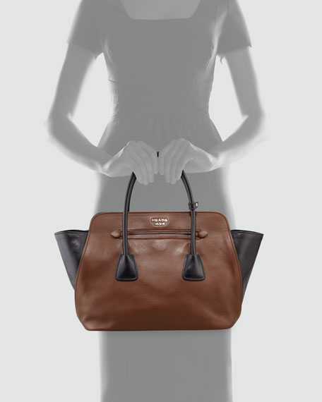 Bicolor Soft Calfskin Tote Bag, Brown/Black (Palissandro+Nero)