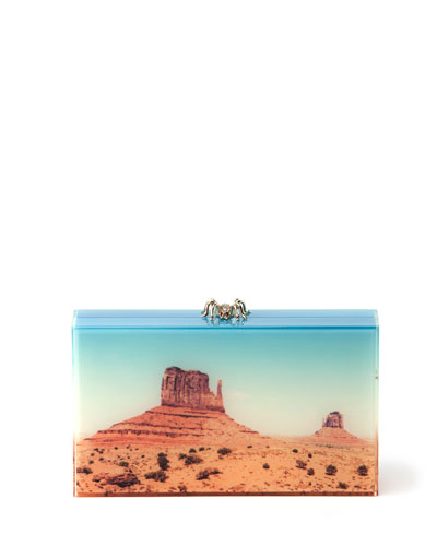 Pandora Panoramic Perspex Clutch Bag