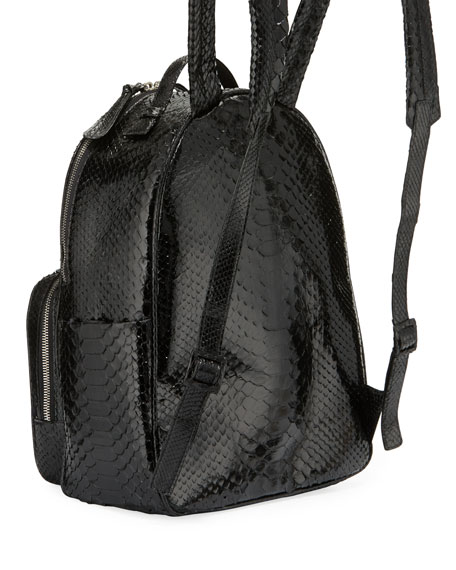 Shiny Python Backpack